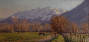 timp. in spring time